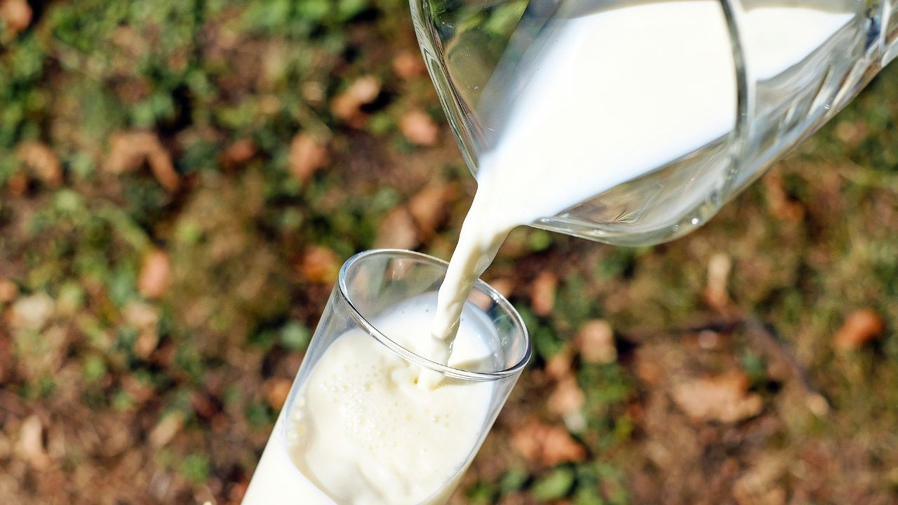 Bulgarian milk analyzers manufacturer