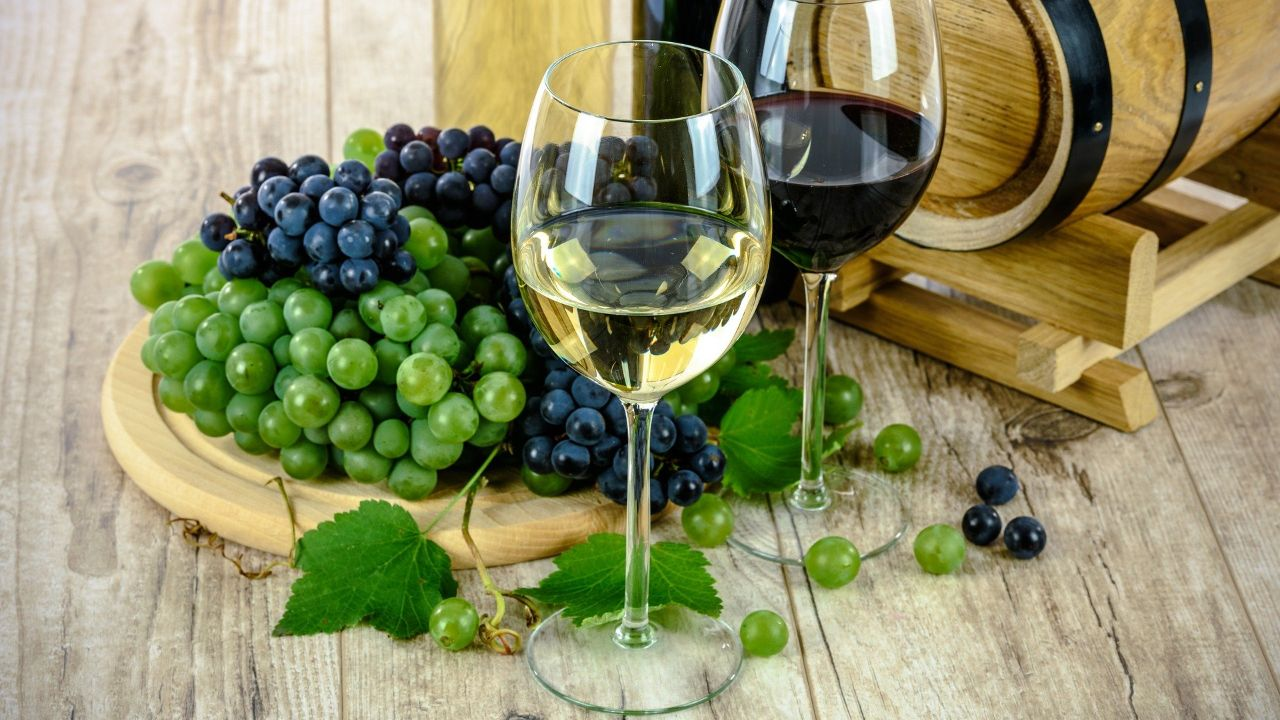 Italian winery located in the country Northeast looking for international buyers