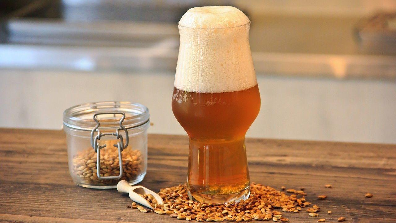Slovenian F&B wholesaler looking for supplier of Belgian beer