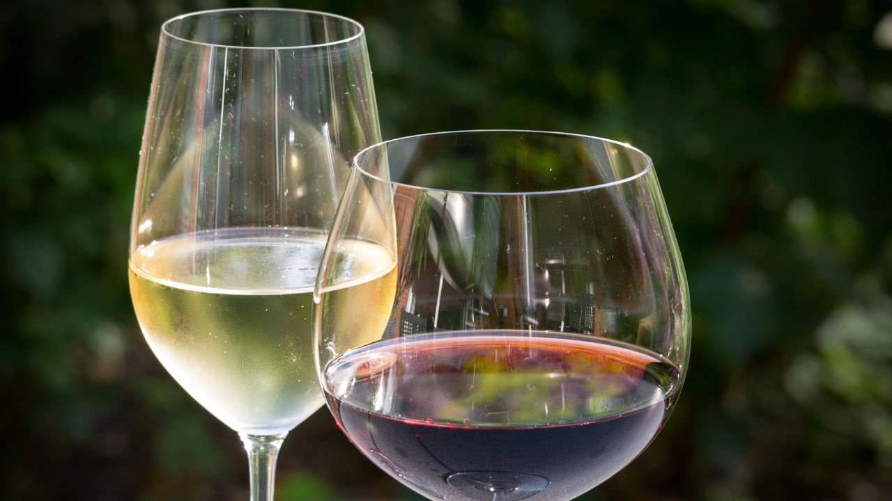 Italian winery looking for distributors abroad