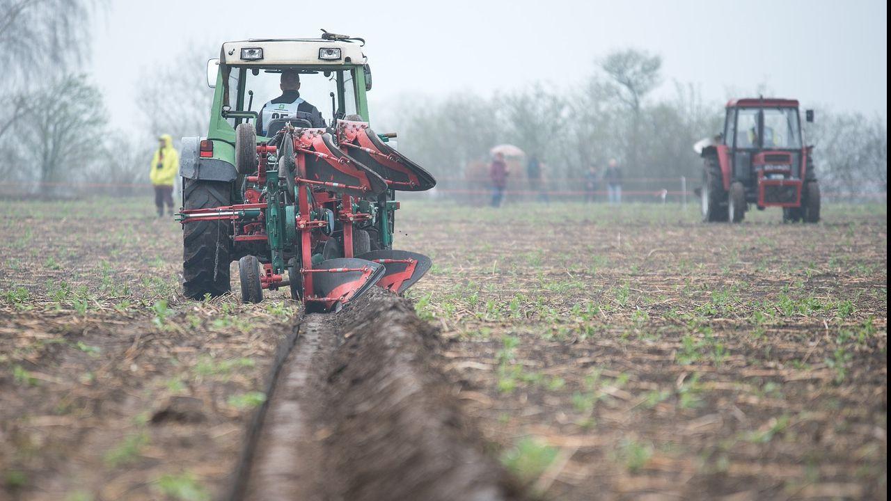 Ukrainian manufacturer of soil tillage machines looking for distributors