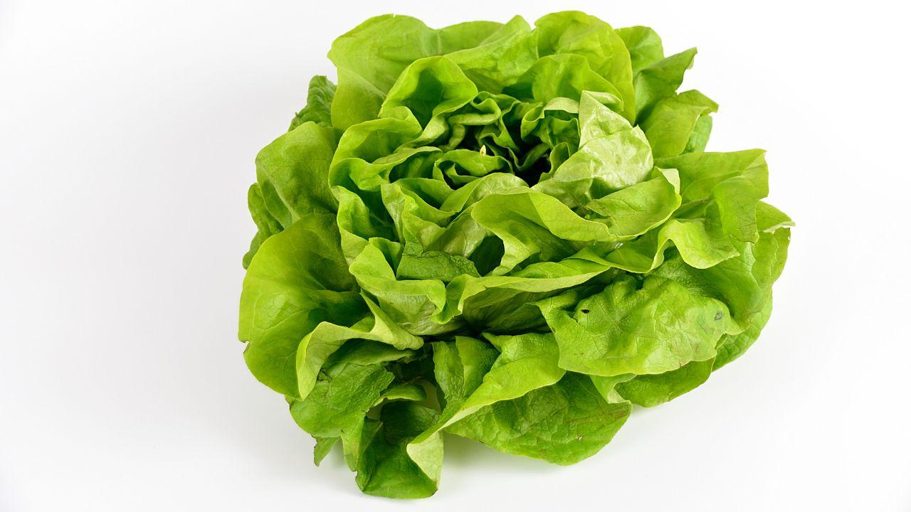 Albanian producer of fresh vegetables seeks distributors.