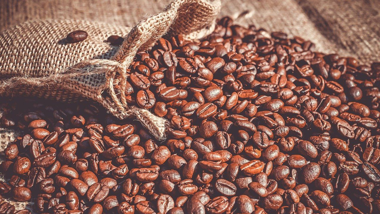 Polish manufacturer of coffee looking for foreign distributors