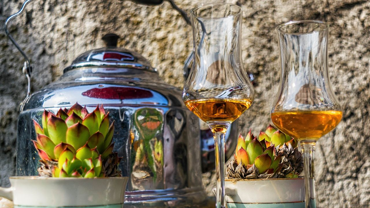 Italian producer of artisanal liqueurs is looking for distributors in EU