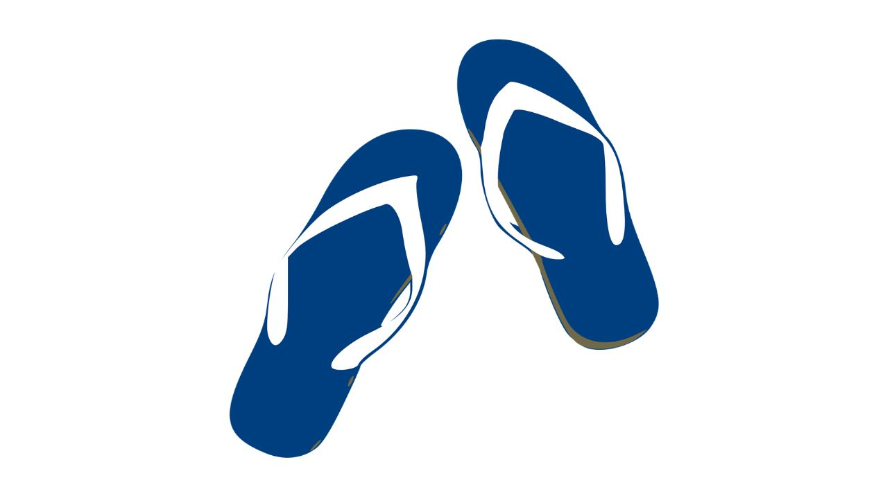 Manufacturer of flip flops from Japan is looking for partners in the European Union