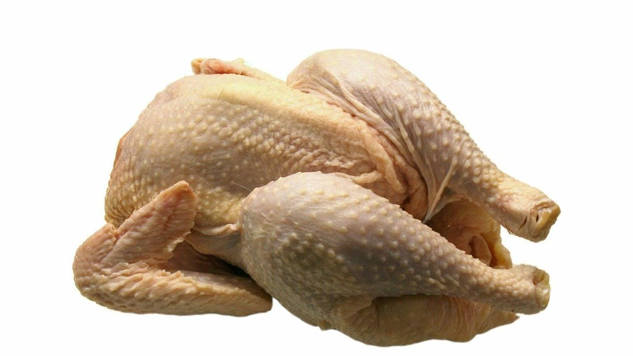 Bulgarian company specialised in poultry processing is looking for distributors and agents