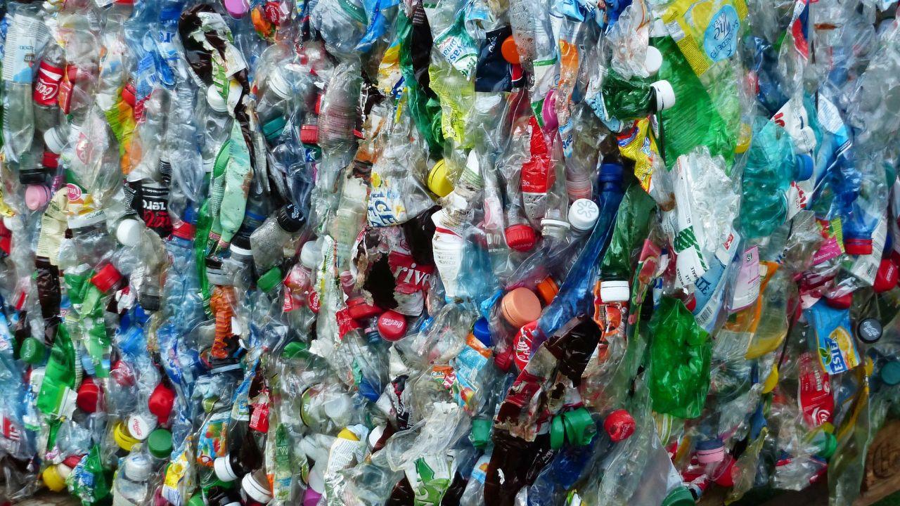 Waste processors for plastics and organics