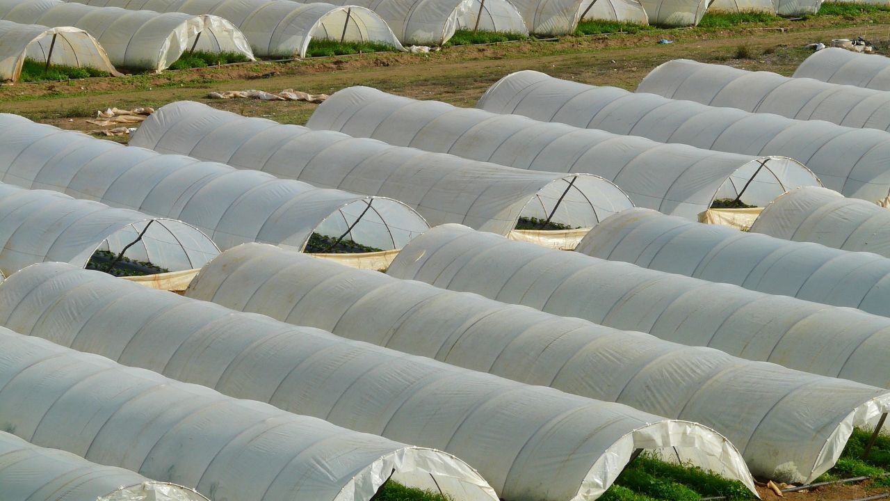 Israeli manufacture of polyethylene film (for agriculture/industrial) seeks partners