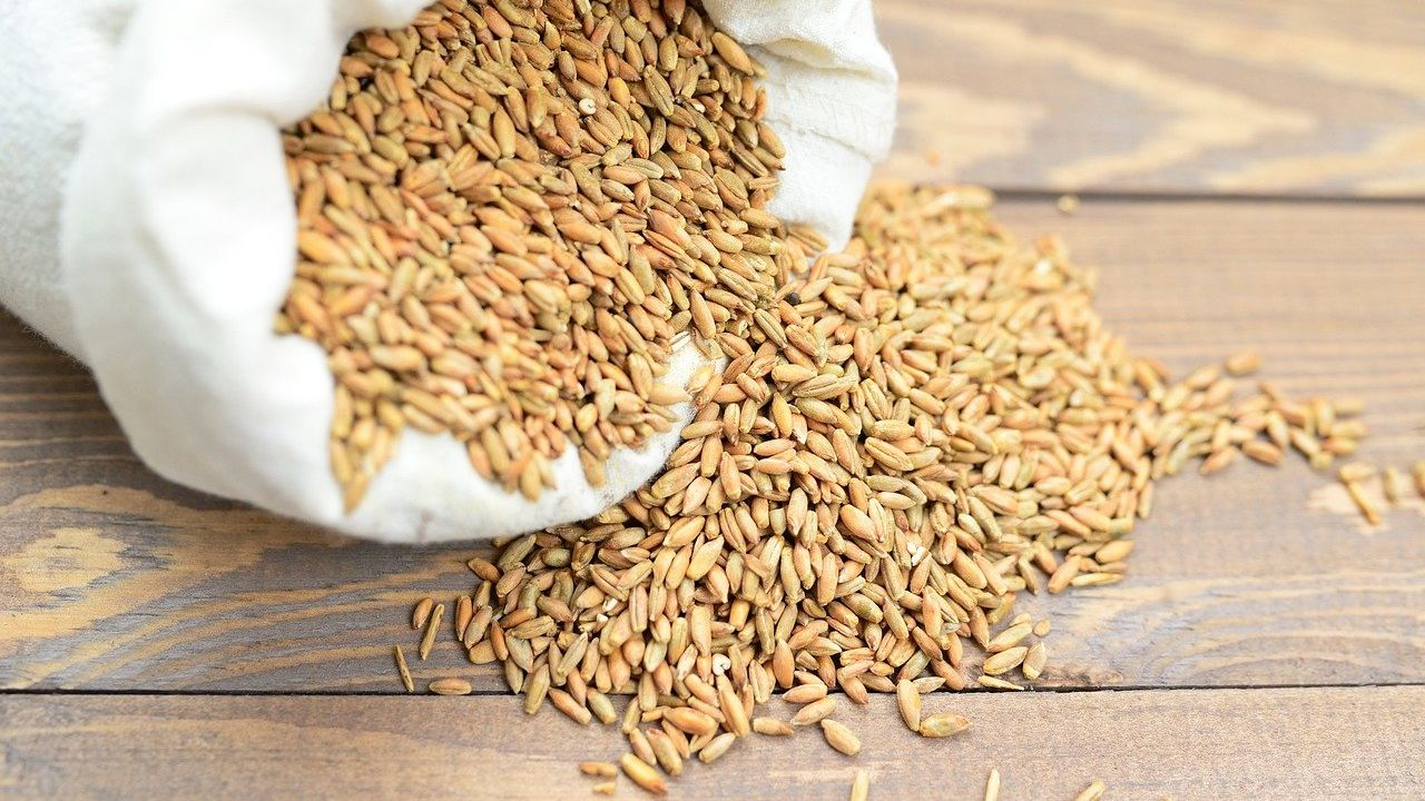 Producer of cereals, oilseeds, leguminous crops, plant oils looking for trade intermediary