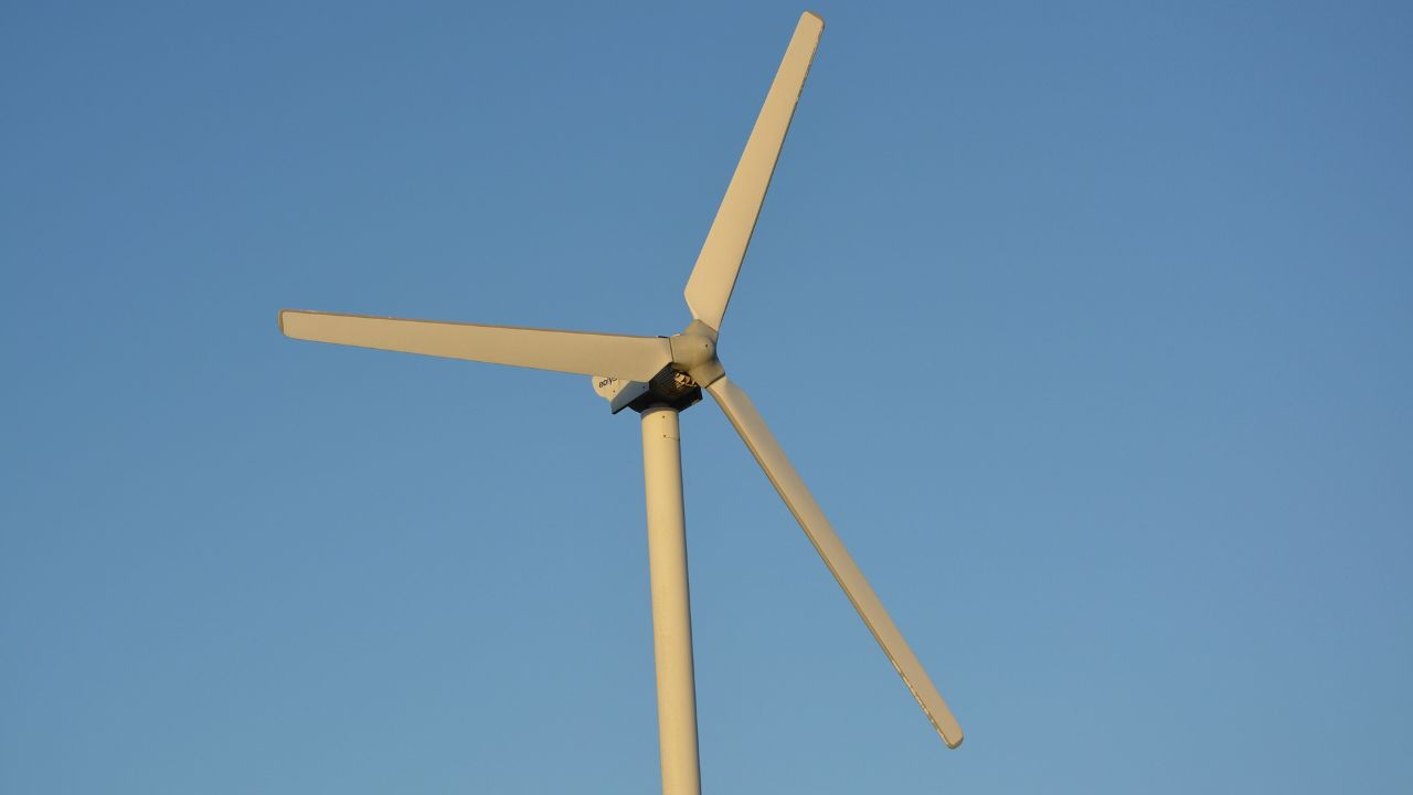 Estonian manufacturer of small wind turbines is interested in finding local representative