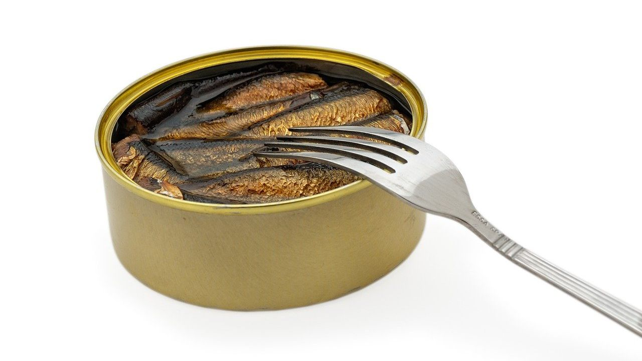 Spanish producer of canned seafood looking for agents or distributors worldwide