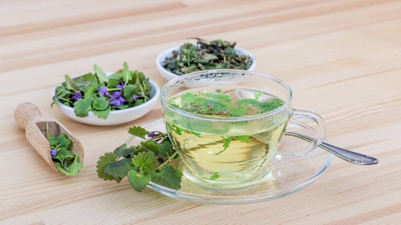 Seeking distributors of herbal teas from Armenia